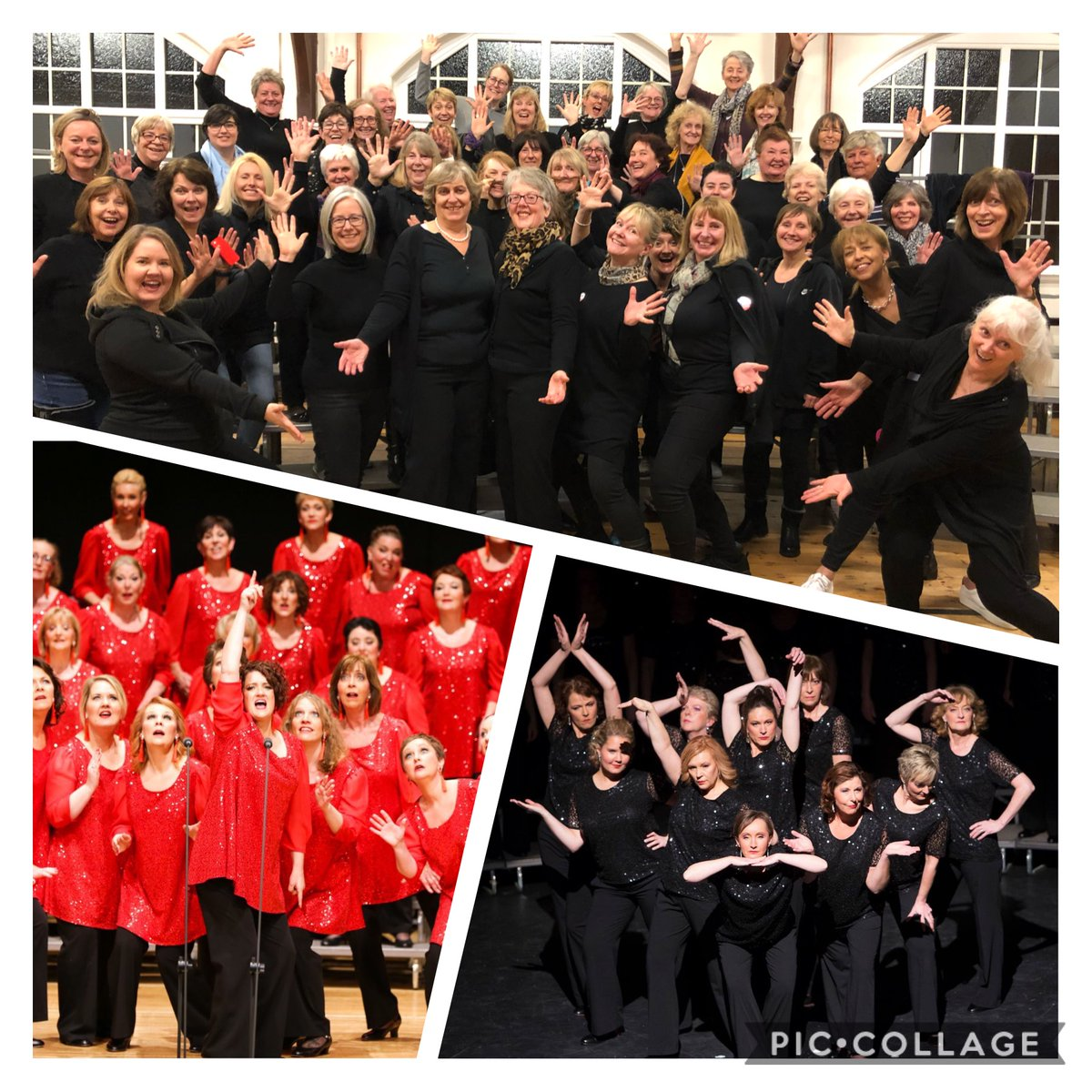 SurreyHarmony photo
