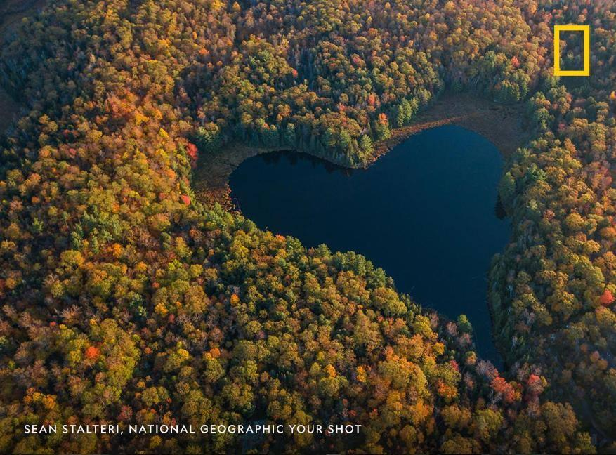 """The """"heart of fall"""" is on full display in this creative perspective captured by Your Shot photographer Sean Stalteri https://t.co/PBycMiFX3A https://t.co/ldWsUariDX"""