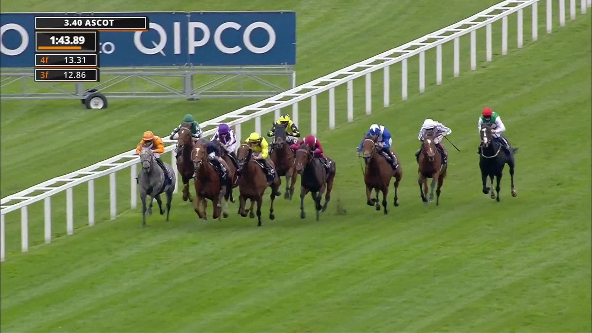 champion stakes ascot 2021 betting odds