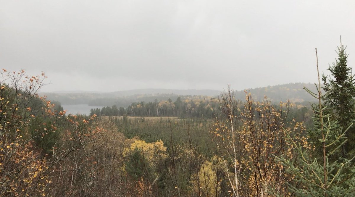 2:10pm TRAIL UPDATE Booth's Rock, Centennial Ridges, Lookout and Track & Tower Trails are either full or almost full.  🍂 Plan accordingly and try out some of our other great trails! https://t.co/XFidl4s0mz