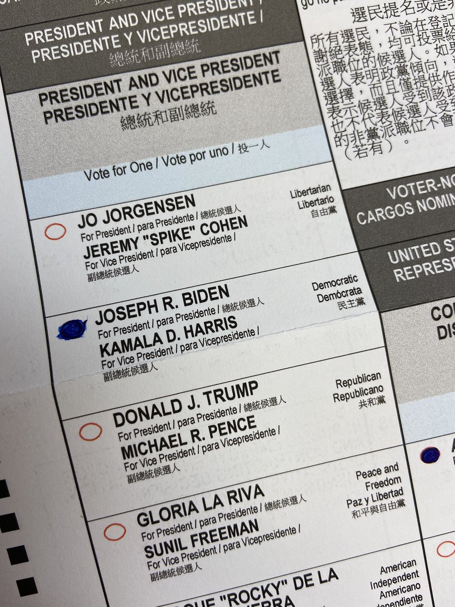 I'm a lifelong Republican and I voted for @JoeBiden and @KamalaHarris .   @ProjectLincoln @GOP @CAGOP https://t.co/aJmOZlMXMd