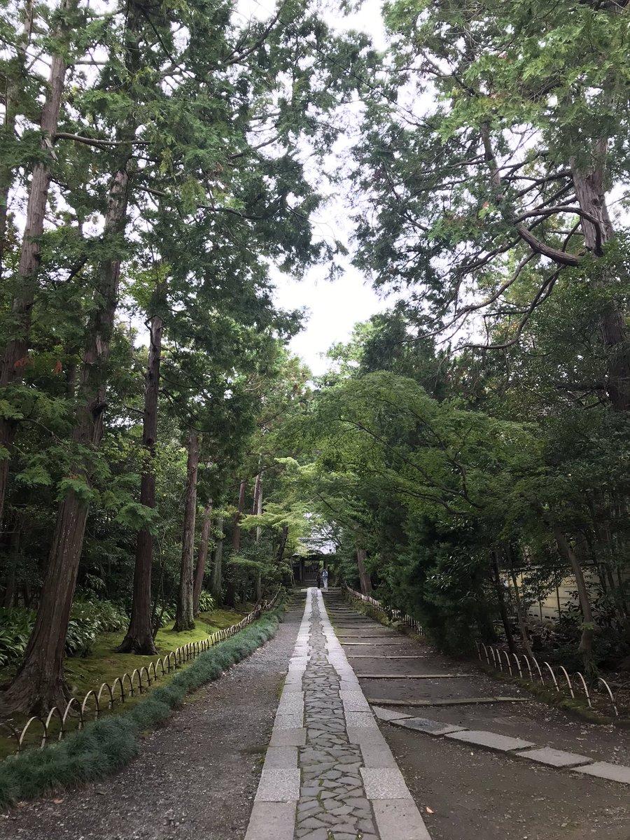 #寿福寺 北条政子さん、源実朝さんのお墓があります。🙏