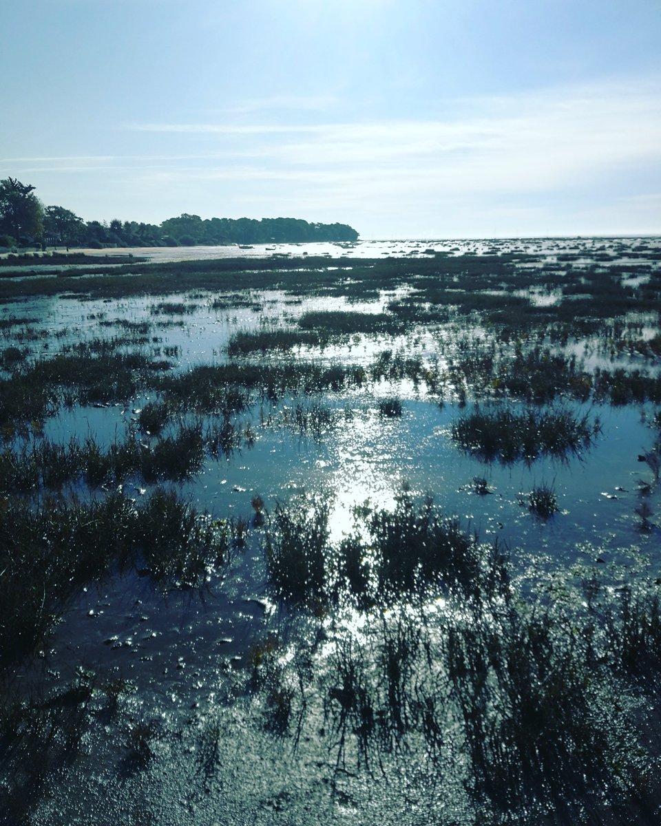 Petite balade sur le bord du bassin... Arès... #huaweip10 #huawei #leica #tourisme #turism #france #nature #gironde #environnement #naturephotography #naturgram #natureperfect #naturepicture #bassindarcachon #ares #dimanche https://t.co/fABgGRpxZO
