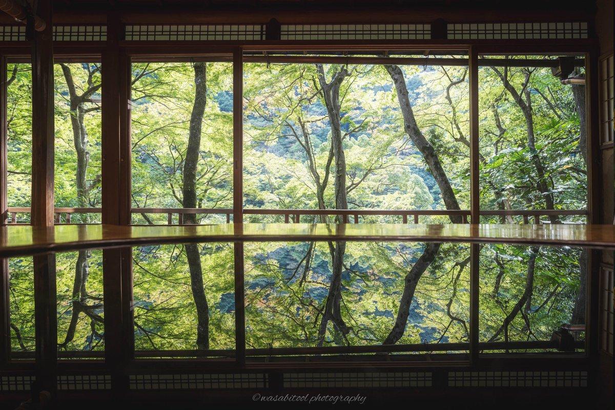 京都嵐山部屋から見た庭園と着物が美しいのです