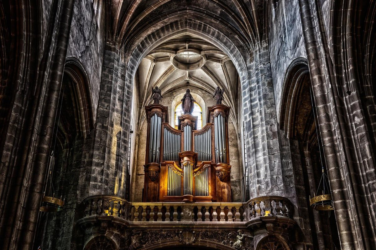 The incredibly beautiful pipe #organ of #NotreDamedeBourg combined with its amazing #architecture make for a #breathtaking #photo.   📷:  Peter H. aka #Tama66 #AppreciationOfArtistry  #AOA #pipeorgan #photography #organ #music #instrumentalist #cathedral #dominiquebaron #apoa https://t.co/Gk3YxPmnjv