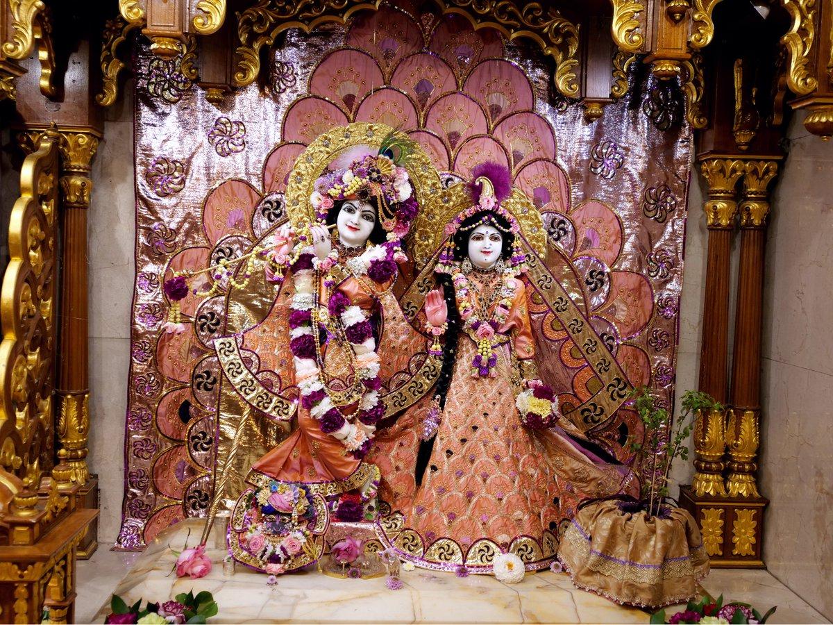 Today's Deity darshan inJanmastamiPurpleMultioutfit #krishna #radharani #radhakrishna #girigovardhan #gauranitai #jagannath #baladev #subhadrppa #srilaprabhupada #deities https://t.co/aL6WoWFNps