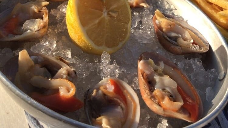 Yummy! Smooth clams!   Man I love Greece🇬🇷  #sundayfunday #lunchtime #seafood #greeksalad #shells #smoothclams #sealovers #bythesea #flisvosmarina #sunset #beautifmoments #sunnyday #greektavern #entrepreneur #freedom #enjoyinglife #greece https://t.co/s6F5RwDy5i