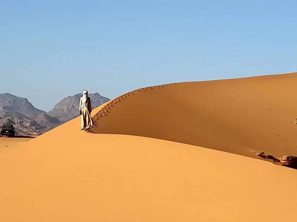 #صحراء #ليبيا 🇱🇾  كتبان من الرمال الذهبية الناعمة .. #اكاكوس  #Smooth #golden #sand #Ghat #Libya #Acacus #Tenery https://t.co/LuqYxgMhqJ