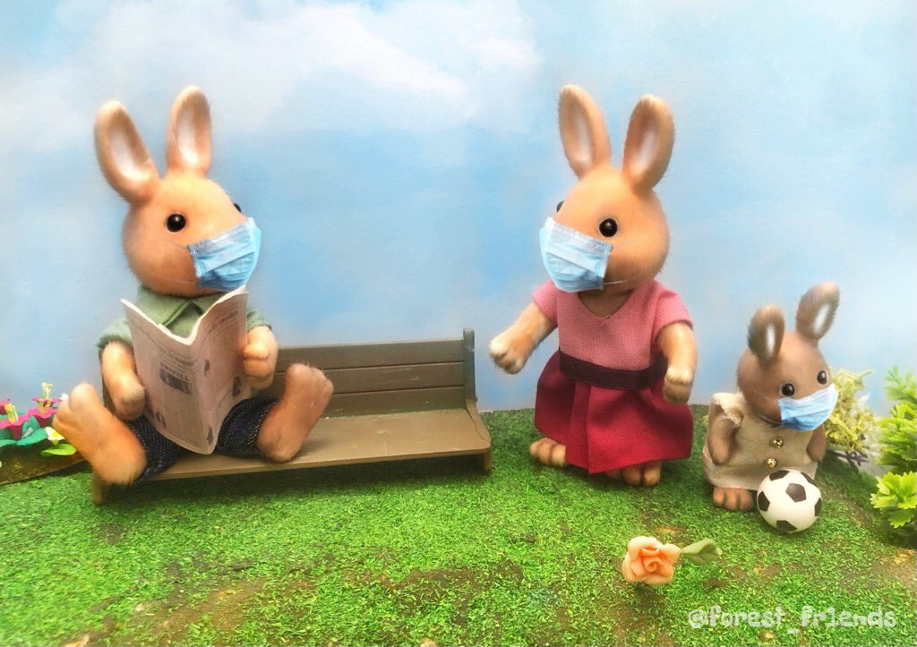 - says here another cat tested positive for covid. - that's terrible. how many rabbits have it currently? - we can't get it brenda. - well then what the merry f**k have we been doing for the last 7 months...? https://t.co/AyKKwGQReE