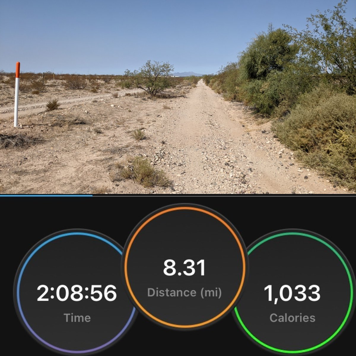 Easy long trail run, my knee was bothering me again so I added two short walks. The weather was still pretty warm 88°. Still glad I got this run in alhamdulillah. #running #fitness #health #endorphins  #longrunsunday #Alhamdulillah #trailsarelife https://t.co/qCG6uPvgoC