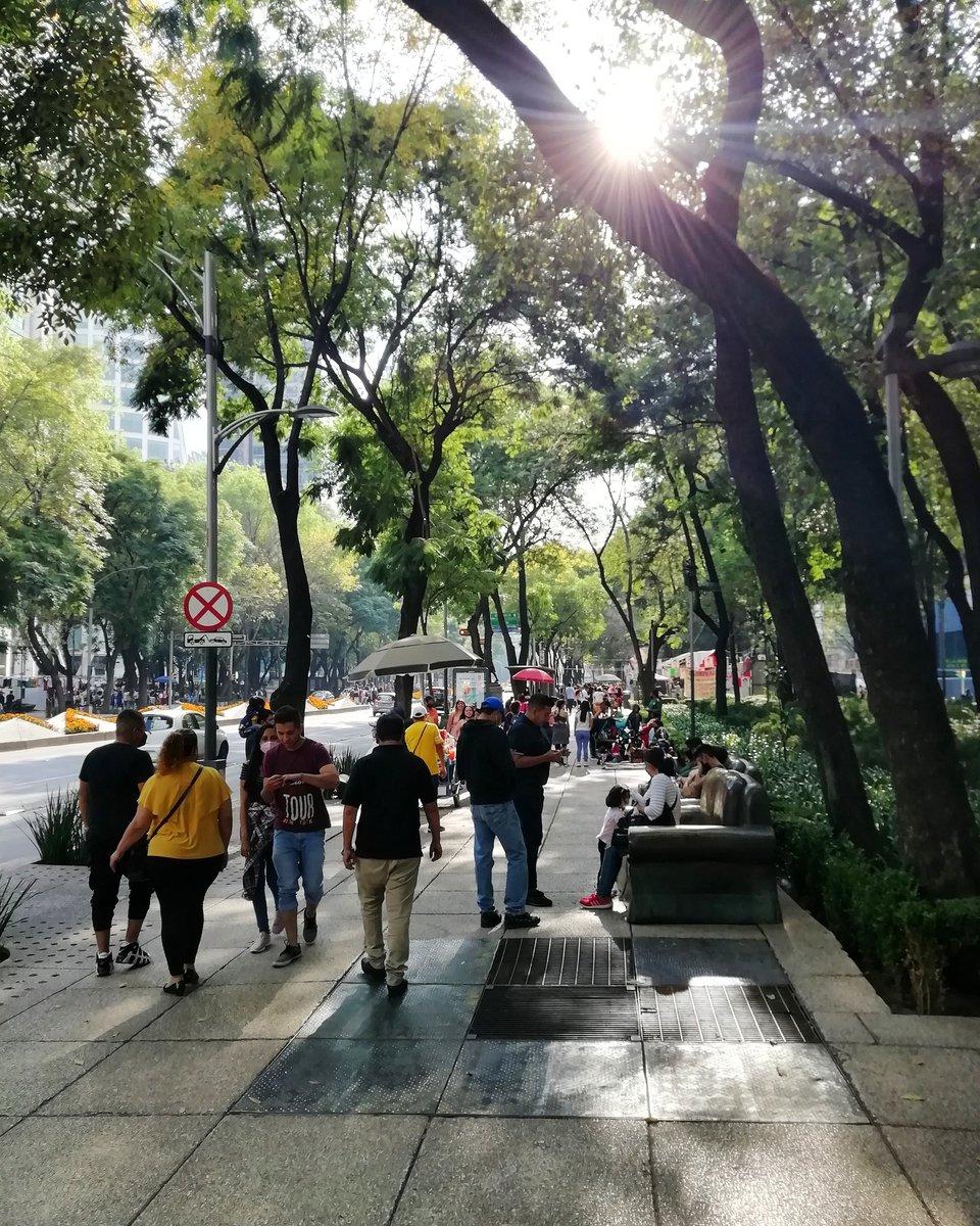 Sunday afternoon on Reforma avenue #FelizDomingoATodos https://t.co/zwjd0i7LGT
