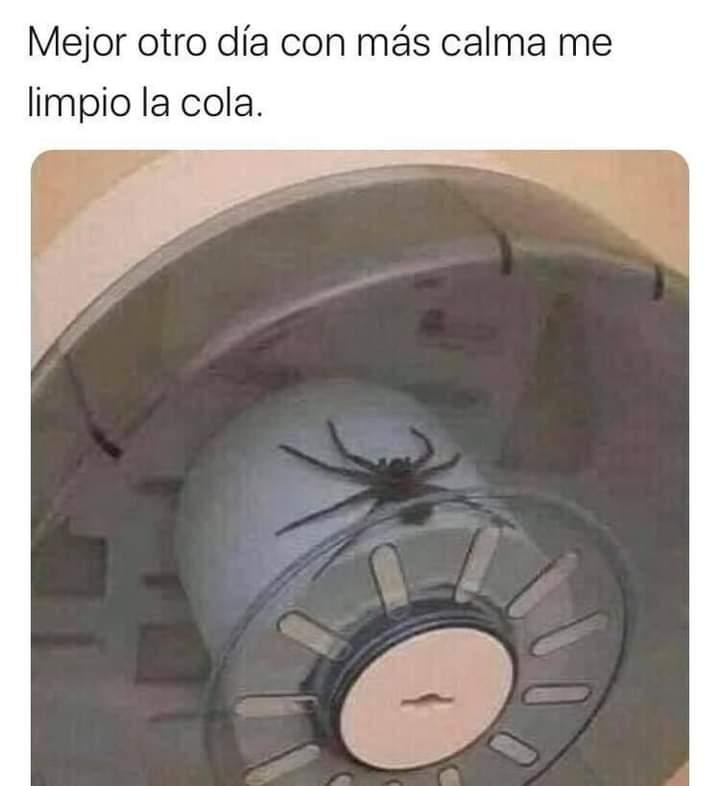 #FelizFinDeSemana  #FelizDomingoATodos  #PorSiTeLoPerdiste #viral #Memes #memetwit #memes2020 #humor #HumorMexicano #LoMasVisto https://t.co/HOhNmLsZuR