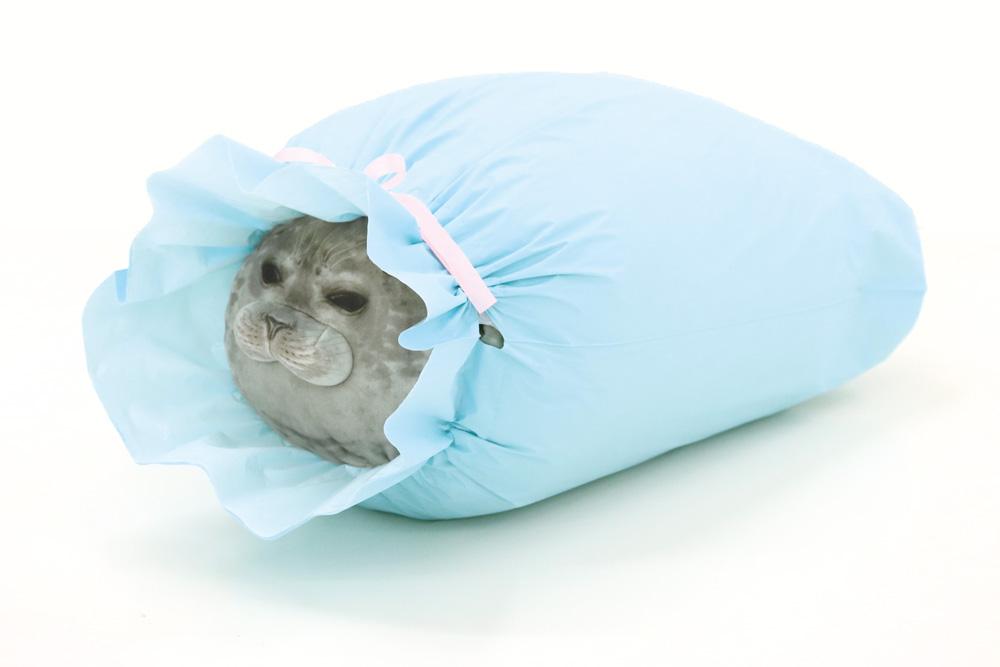 ラッピング袋を商品と一緒にお届けするサービスがスタートしました!が…他の対象商品はラッピング袋に入るのに、アザラシクッションだけ最大サイズの袋にも収まらず、顔が飛び出すというハプニングが起きてしまいました。。申し訳ありません。▼詳しくは