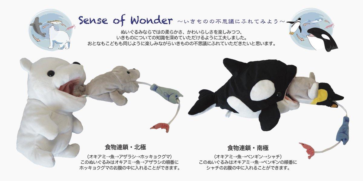 新発売の「食物連鎖」がテーマのぬいぐるみをご紹介します!可愛いだけじゃなく、生き物についての知識を深めていただけるように工夫しました。北極と南極の2種類です。口の中に順番に入れて遊べてます。取扱店舗とシリーズ情報はこちら⬇︎#ぬいぐるみ  #水族館 #動物園