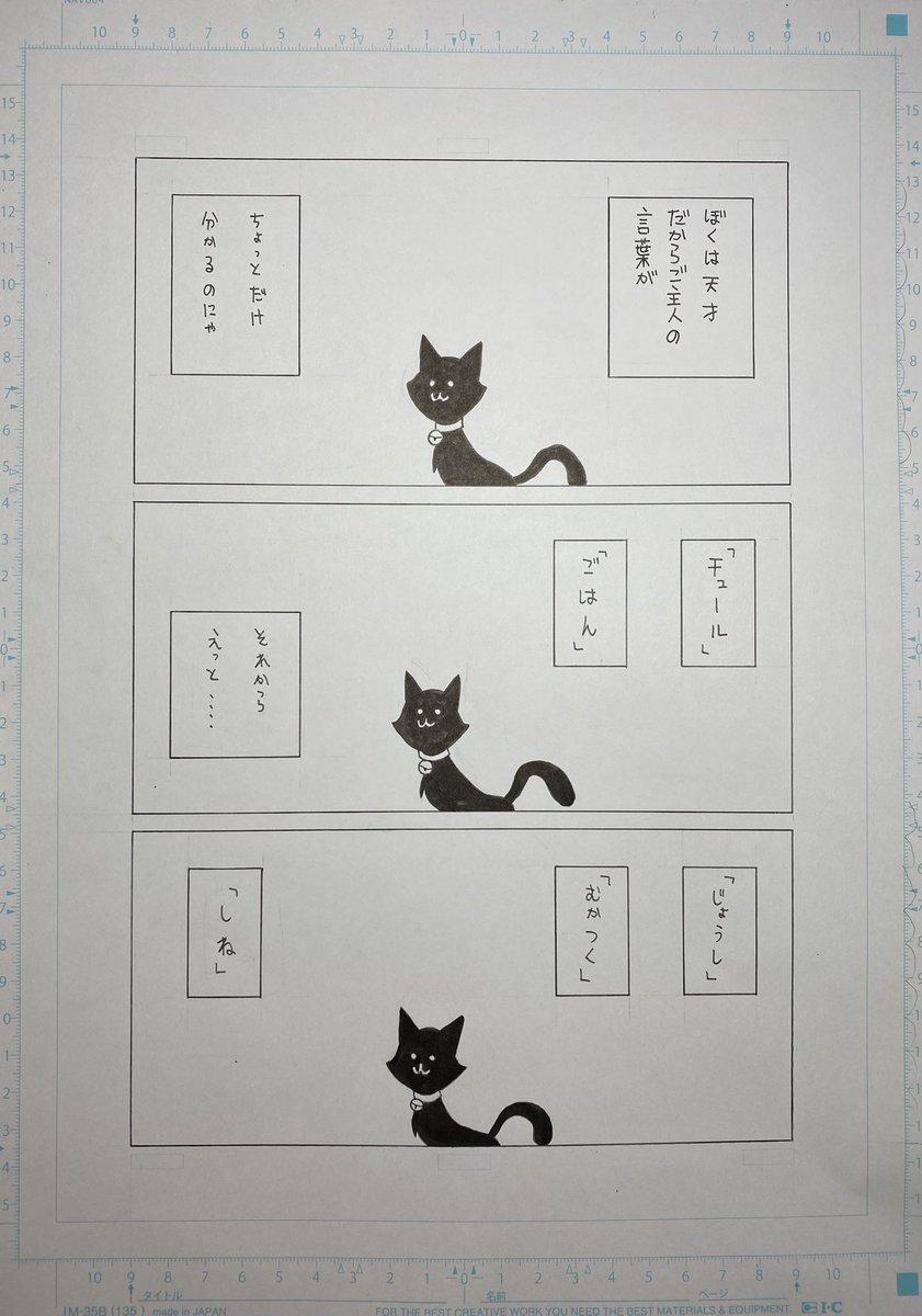 「ぼくは賢い猫だから」