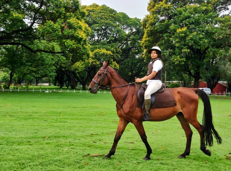 THREAD  As I complete my probation this week, here's a recap on how comprehensive #IFS training is, especially for those who ask me if #women can opt for IFS -  #HorseRiding @ Indian Military Academy  To improve coordination, confidence & physical posture of an officer      (1/8) https://t.co/wL6z79lWMS