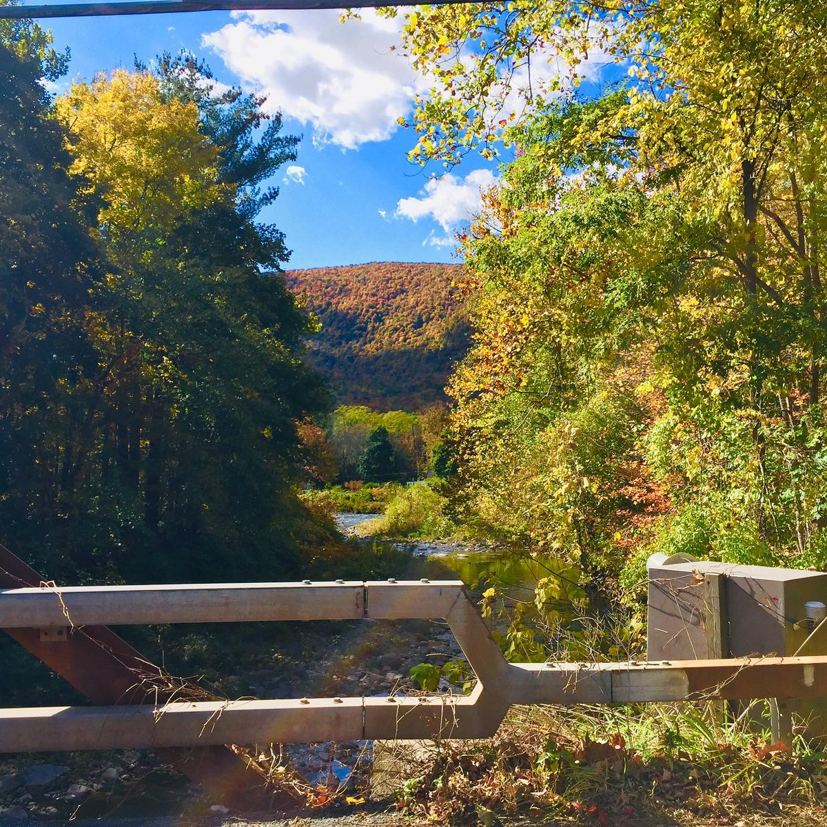 The Fall Colors are spectacular this year. The bouquets of fall colors are unforgettable. Come visit and enjoy the Season with us! #fallcolors #fall #fallfolliage #iheartny #iloveny #natureviews #landscapephotography #autumn #catskills #hudsonvalley #leafpeepers #PhoeniciaNY https://t.co/dhtzhhLUgE