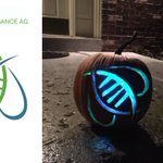 Image for the Tweet beginning: #AgTech #innovation in pumpkin carving: