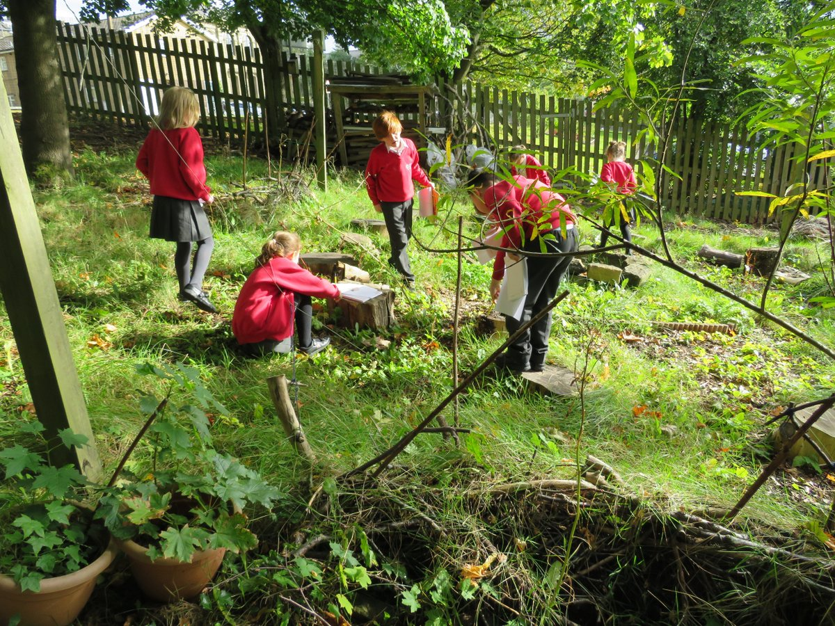 Forest school science day 🌿 Juniper class explored Forest school to find different invertebrates. We had lots of fun searching 🔍 and an even better time researching and learning about what we found  ✏️ #Forestschool   #Nature #Primary #Exploring #invertebrates #Science