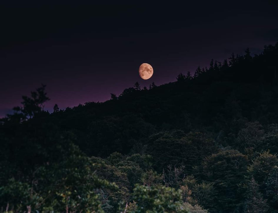 #FridayPhoto There aren't many sights as beautiful as a #fullmoon over #Glenmalure.  @visitwicklow @WicklowHour @DigitalDetoxes @ancienteastIRL @broadsheet_ie https://t.co/8Ku5X780vy