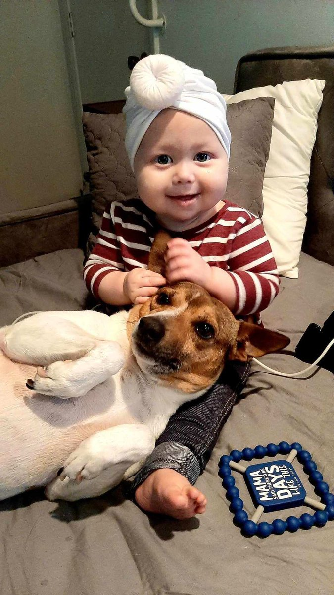 Our little human is officially cancer free!!! That's her dog Boone! ❤️ https://t.co/9KgUyuAxfA