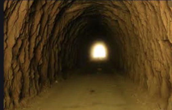 Η εκλογή Τατάρ αλλάζει δεδομένα για Κυπριακό  Μπαίνουμε σε ένα άγνωστο σκοτεινό τούνελ ,όπου ο Νίκαρος πρέπει να γνωρίσει το συνταξιδιώτη του και μετά να ξεκινήσει τη πορεία προς ένα φώς στην άκρη του!  Τουλάχιστον γνωρίζουμε ότι το φανάρι 💡 κρατά το ο Ερντογάν 🐒🥰  #Cyprus https://t.co/7DAKVkafkS