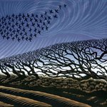 Image for the Tweet beginning: Niki Bowers Storm Starlings
