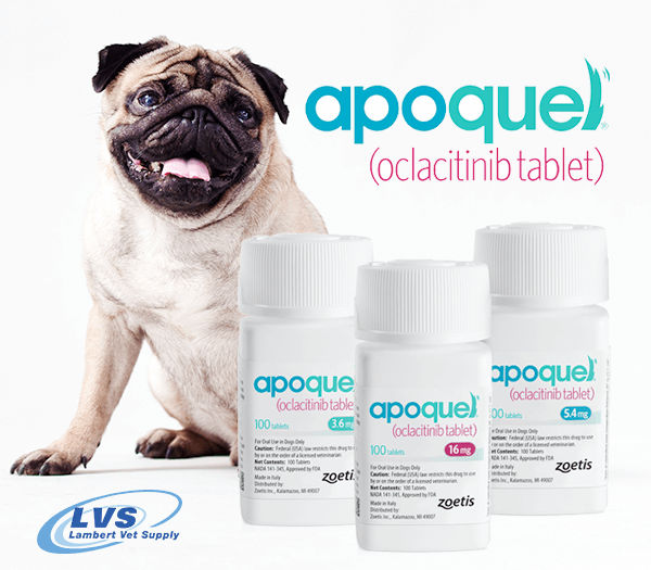 Stop canine skin itching & inflammation fast with Apoquel! It acts quickly & extends control of itching & irritation. It can be used with other skin medications & treatments, too. Valid veterinary prescription required. Start here --> https://t.co/pVYb0zb8ms https://t.co/pusRmUlGRE