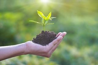 Vamos a conocer cómo se puede diseñar y desarrollar un proyecto emprendedor con la mirada puesta en las  3hélices que impulsan a la sostenibilidad: desarrollo económico, social y ambiental. ¿Te apuntas?  🌏 #JuevesSostenibles @IAF_Aragon 📅 22 de octubre