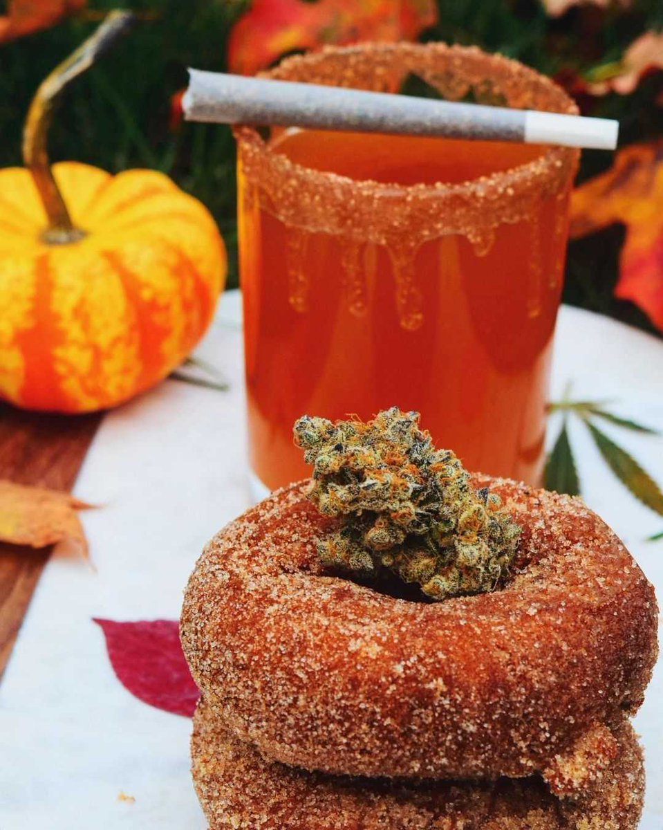 A winning combo. 🤗🍎 Apple cider, Apple cider donuts, and some fine looking flower.  📸: https://t.co/Yfpx4TJJv6 💯 https://t.co/Kp7B8W9DQO