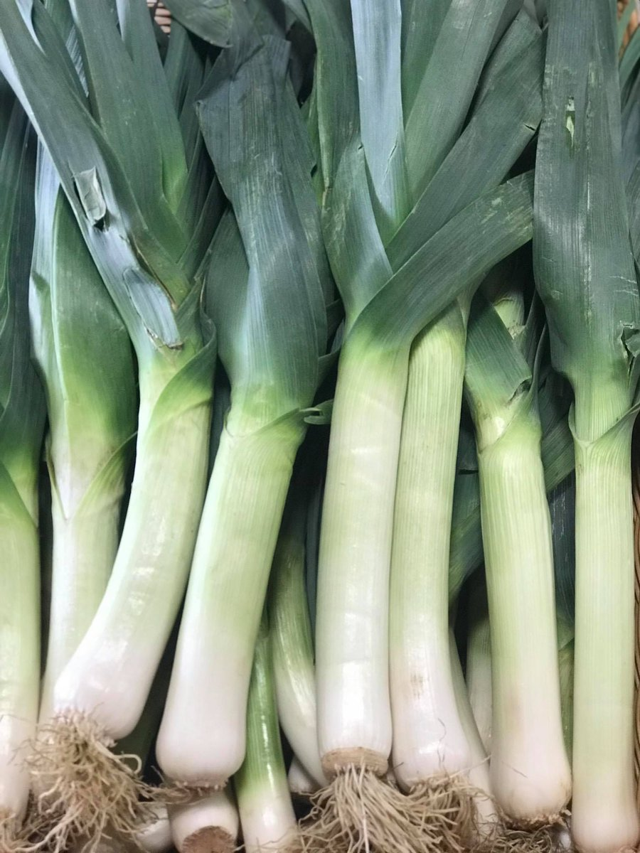 Stock up on Kutchey Family Farm fall favorites, like leeks, squash, and syrups before they close for the season! Their farm market operates through October 31st and will reopen in Mid July 2021. #macomb #knowyourfarmer #fall https://t.co/DEpRd9hYtz