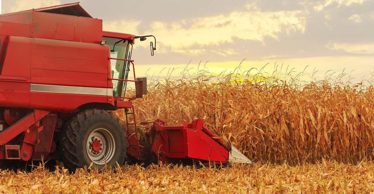 @USDA #crop progress: #Corn harvest reaches 60% #Soybean progress even farther along, with three-fourths of the crop #harvest20 through October 18 https://t.co/RnmSYBeoUM https://t.co/mv6GFGSeGt
