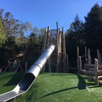Image for the Tweet beginning: The new Redwood Grove Playground