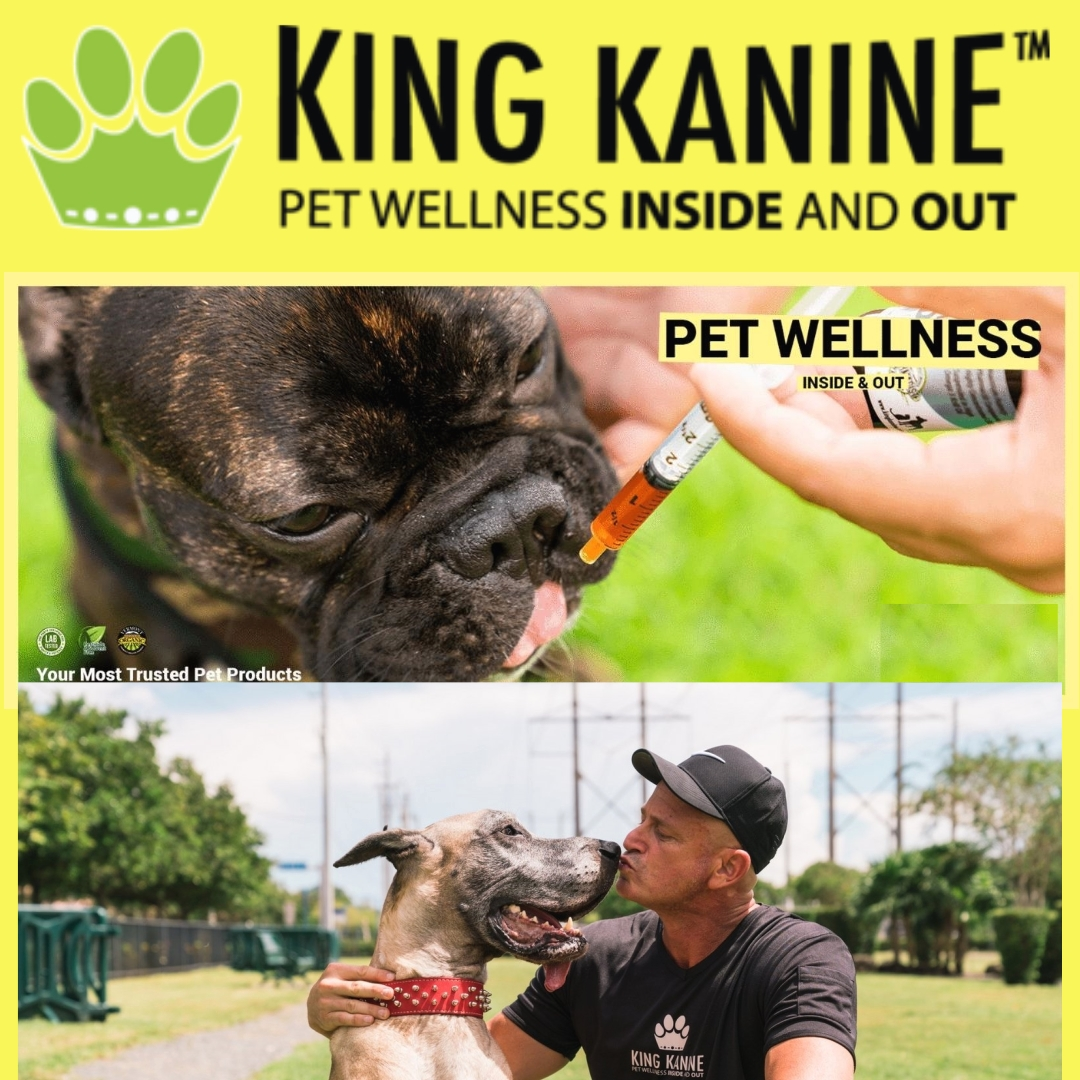 Organic CBD products for pets available, bringing joy to families nationwide as we help them keep their four-legged members healthy and happy. King Kanine helps raise funds and awareness for the ASPCA #community #Pethealth #CBD  >>  https://t.co/FRJ90K9Esc https://t.co/RsW9oVHfBY