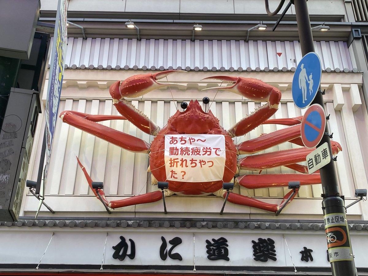 か、蟹ーーーーーーーーーーッ!!!!!