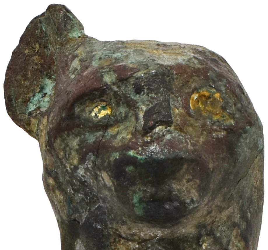 I spent yesterday photographing objects in the animals case of @TheEgyptCentre. It's always nice to spot something you've never noticed before. For example, check out the golden eyes of this copper alloy cat! #TheGoldenOne https://t.co/6vq4umzSp2