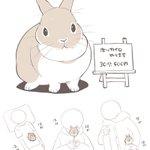 こんなホッカイロ欲しい?ホッカイロのバイトをしているのはウサギさん!