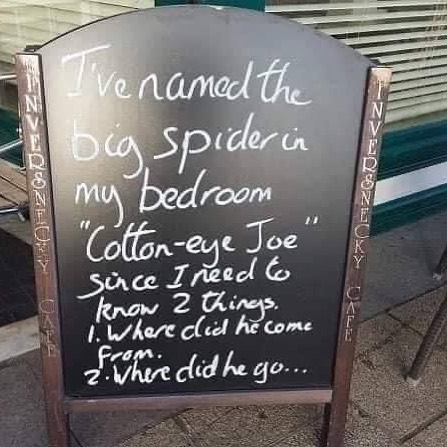 #funnysign #cottoneyejoe #spider #wheredidhecomefrom #wheredidhego #cafesign #namingthings #whatsinaname