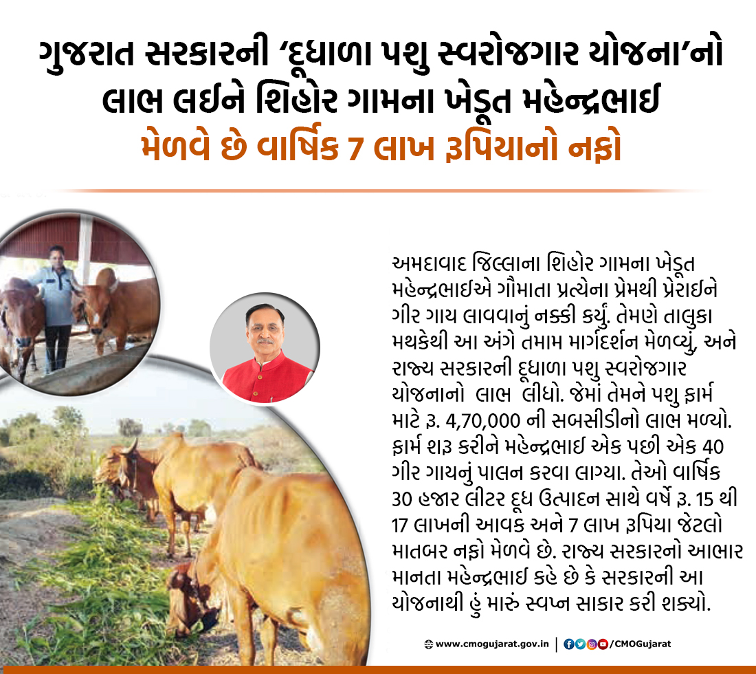 Mahendrabhai, a farmer from Shihor village of Ahmedabad district, earns an annual profit of Rs. 7 lakh by availing the benefit of Gujarat Govts Dudhala Pashu Swarojgar Yojana.