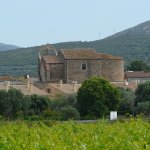 Image for the Tweet beginning: #Vilajuïga (Alt #Empordà) s'encomanava a