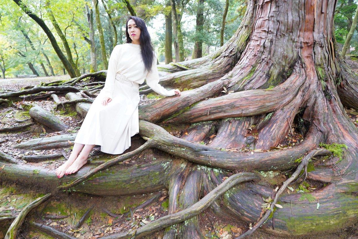 奈良公園。 今日は、久々に奈良公園で撮影してきました。 雨の中でしたが何とか撮影出来て良かった❗️  model: moe👠nurse(@moepy1125)  #奈良公園 #ポートレート #ポートレートモデル募集 #被写体募集中 #撮影モデル募集 #被写体さんと繋がりたい #関西被写体 #写真撮ってる人と繫がりたい https://t.co/eUWfswWiRe