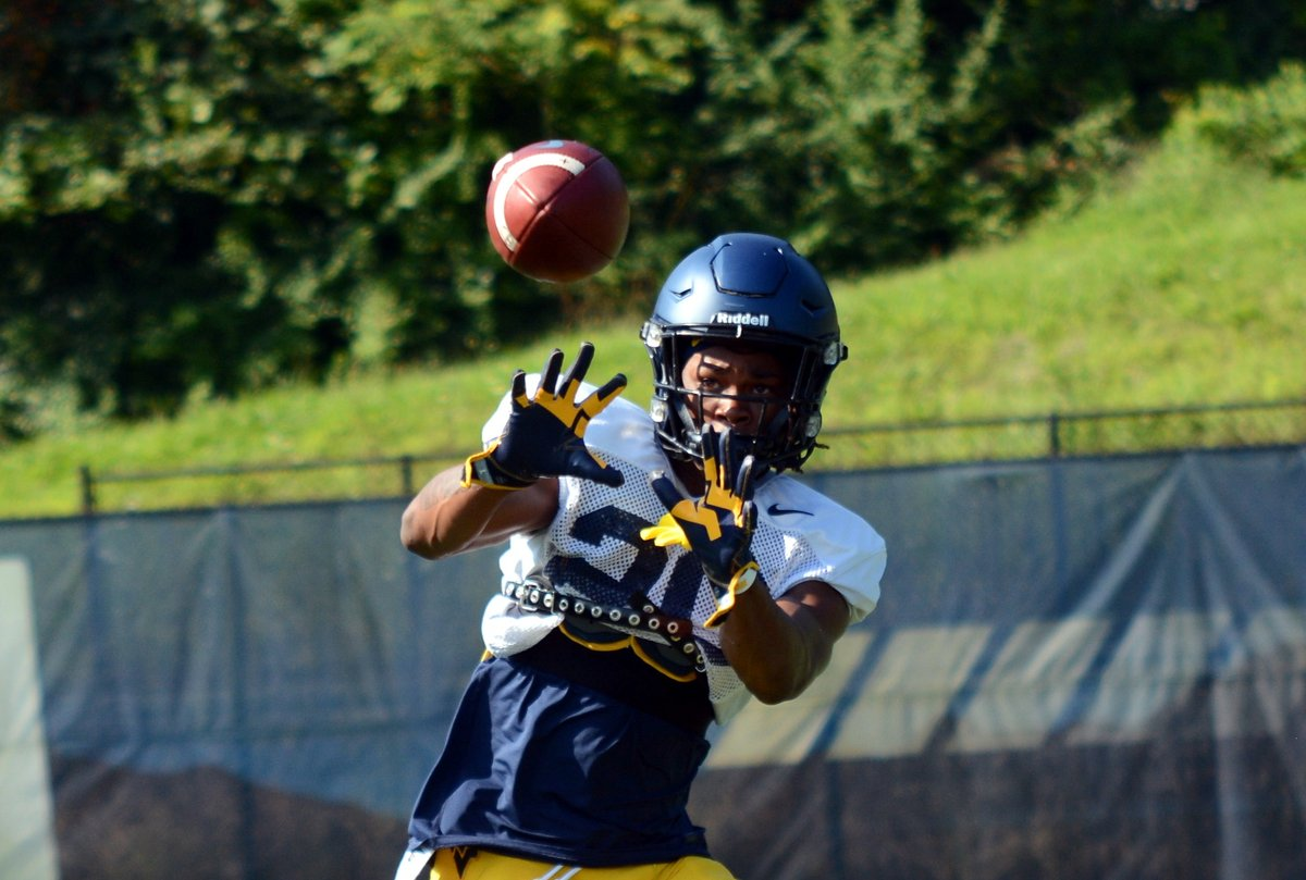 West Virginia Mountaineers football - Wikiwand