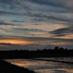 Image for the Tweet beginning: Natural Photography 😍❤ P.C: @MuddasirFaiyaj  - - - - - - #NaturePhotography