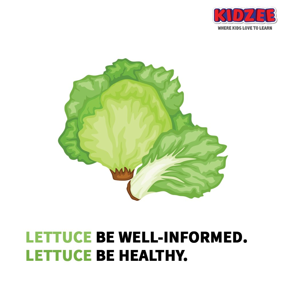 We, #lettuce leaves, are one of the world's most popular #salad #vegetables.  We come in many shapes, sizes & colours.  We are often eaten cold & raw, in salads, hamburgers, tacos, sandwiches & many other dishes.  #Kidzee #KidzeeStudents #Learning #EatYourGreens #HealthyFood https://t.co/JTPHhMcKYv