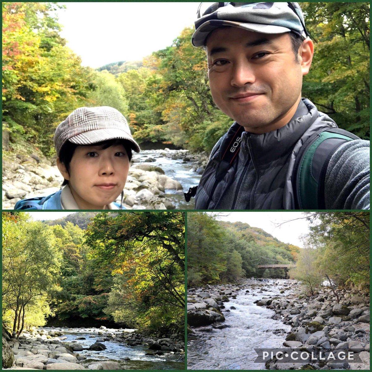 【青森・奥入瀬】栗駒山から奥入瀬へ。紅葉最盛期の一歩手前でしたが素晴らしい自然です。99%広葉樹林で覆われている森が広がり、手付かずのブナ林を見ることが出来ました。奥入瀬渓流の水の透明さにも感激。ホテルもこの上なく素敵でしたね。#東北 #青森 #奥入瀬 #自然 #旅行 #旅 #ホテル #森 #紅葉 https://t.co/YzFmwIGR4K