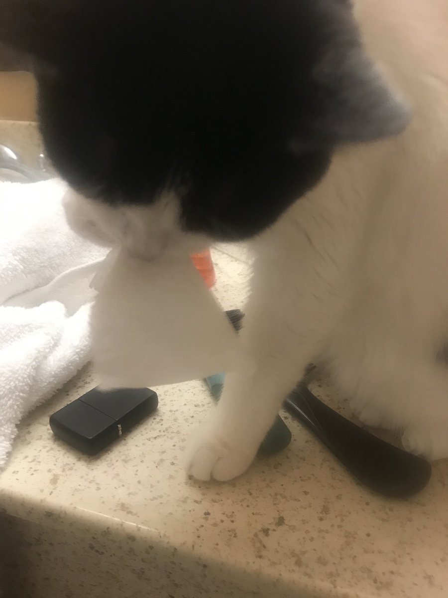What is toilet paper I clean my feets mommy. https://t.co/thmemUIvBf