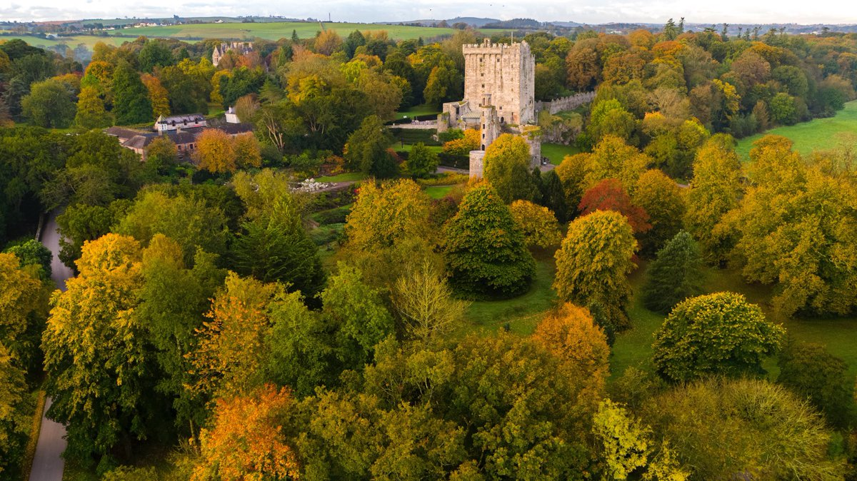 Update: Our gardens will be open for walks for visitors from Thursday the 22nd of October to December 1st.  We hope you enjoy your walks, be safe and see you soon!  #staylocal #blarneycastleandgardens #purecorkwelcomes #cork #blarney #castles #walks #pictureoftheday #autumn https://t.co/cxs45k0ytd