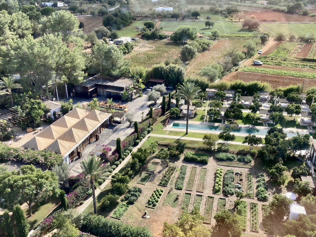 Quick trip to #Ibiza for lunch at #Agroturismo ATZARO, surrounded by the most lush gardens. The mystical rock of Es Vedrà looking impressive as always, San Antonio a little quiet. Bet @CafedelMar_Ibz has never been so chilled...😅  #helicopter #helicharter #Mallorca #flying https://t.co/K3nWV1XxGD