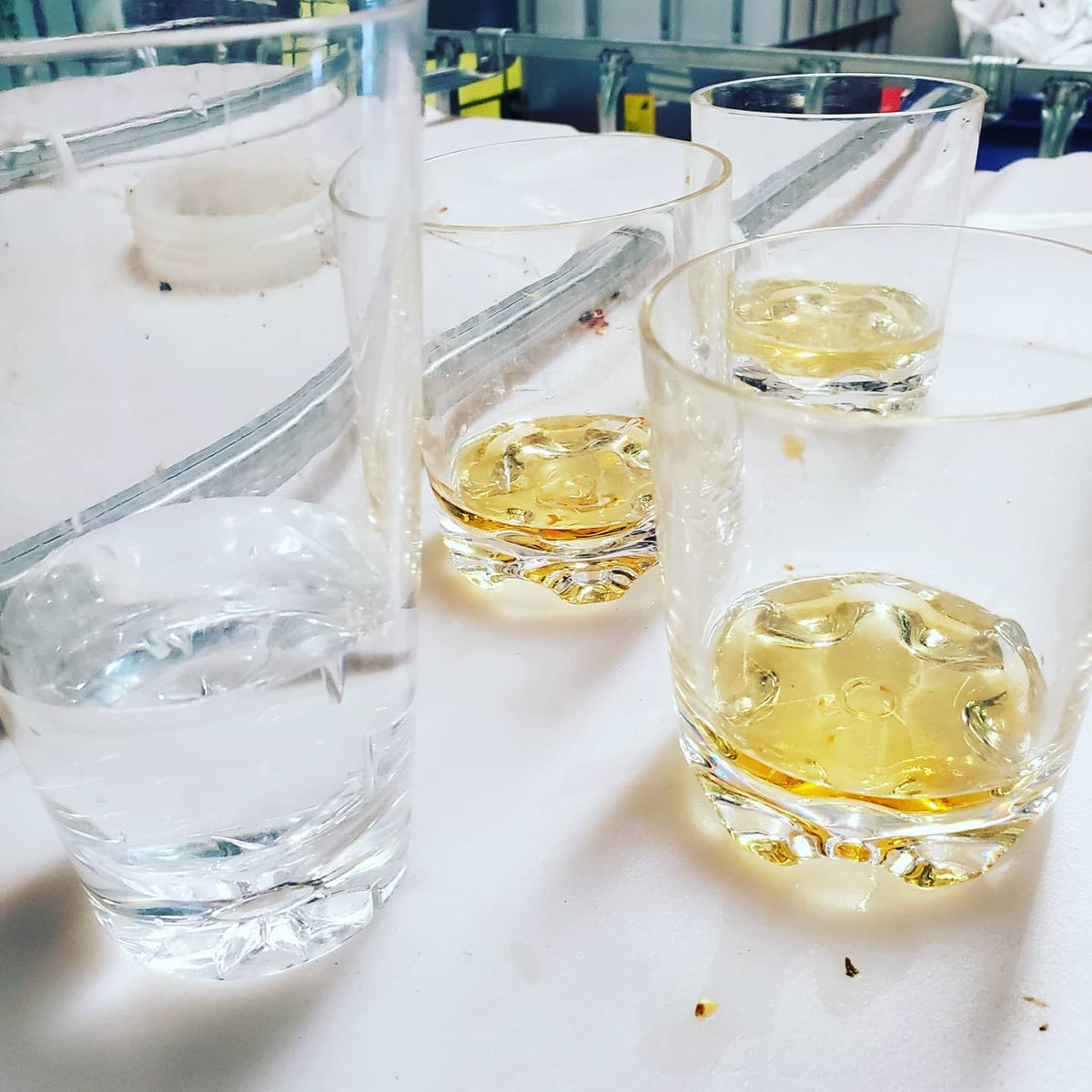 Giddy up! Started the day with a bang! Taste tested batches of pepper vodka first thing this morning before we pressed them! #doundrins #Cheers #madisonwi #Madison #Wisconsin @WIDistributors #distillery #distilling #craftspirits #peppervodka #vodka #alcohol #madisonwisconsin https://t.co/evQWwKzkkt