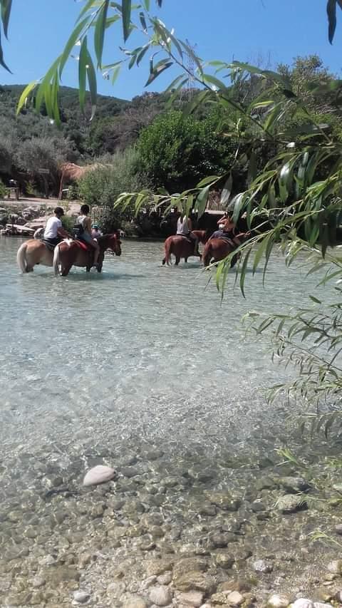 Με τα άλογα στον Αχέροντα.
